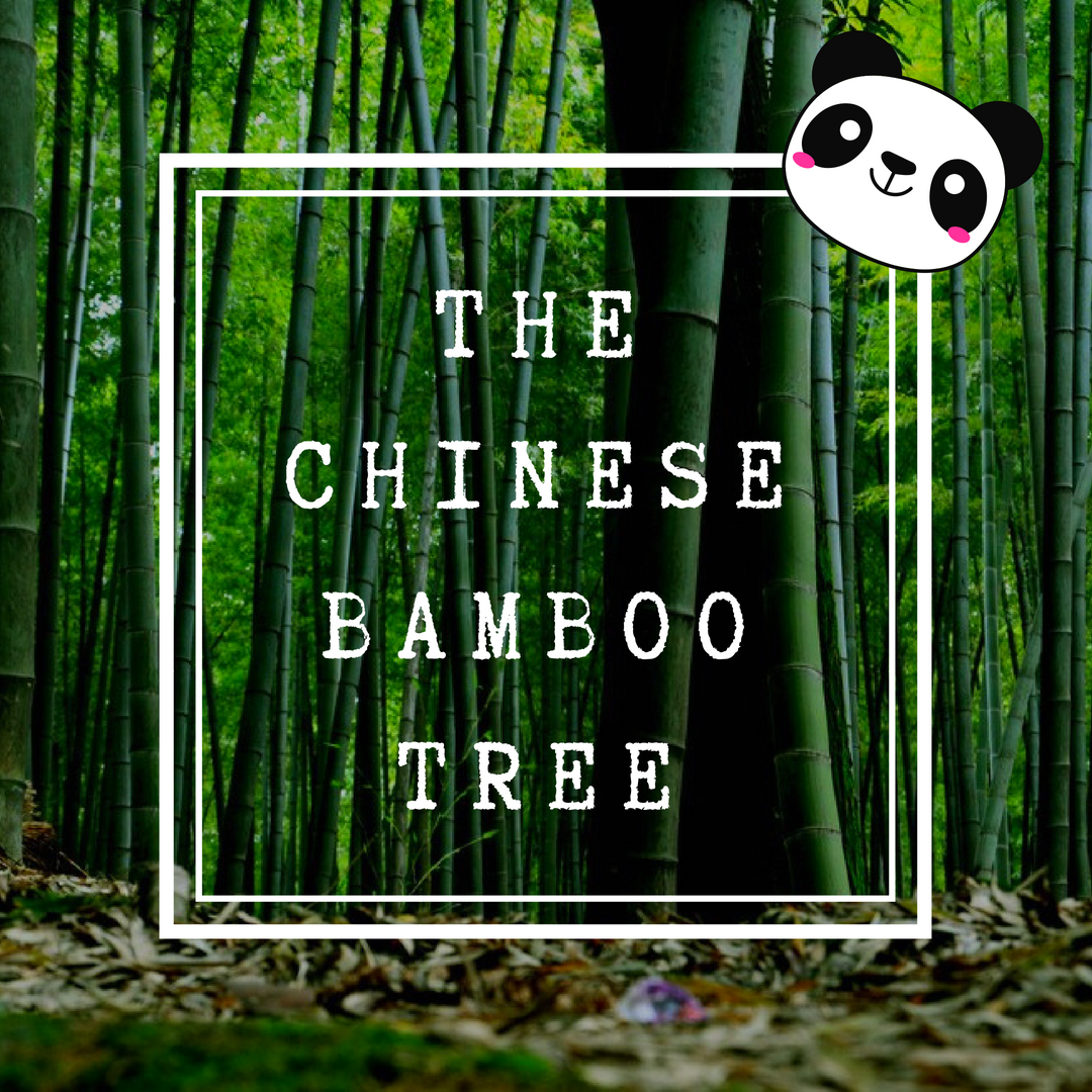 The Chinese Bamboo Tree Les Brown Motivational Speech